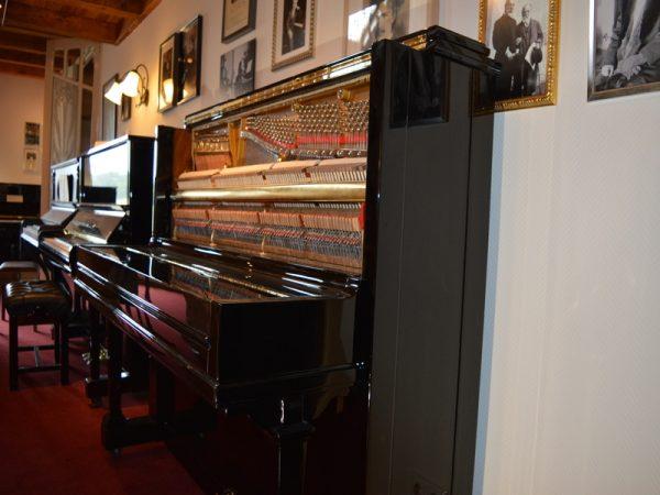 Steinway Vertegrand interior1
