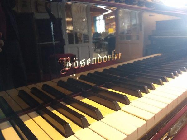 Bosie200 klavier2