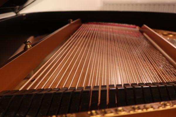 SteinwayM235986-bassstrings
