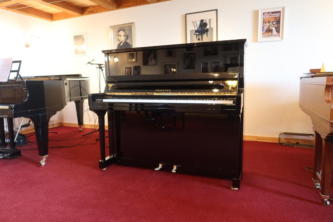 Primeur: Phoenix Piano Met Kevlar Zangbodem